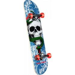Powell Peralta - Powell Peralta Skull and Snake One Off Complete - 7.625 x 31.625