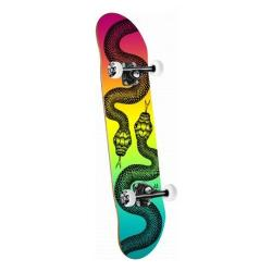 Powell Peralta - Powell Peralta Snakes Colby Fade Assembly 7.88 x 31.67