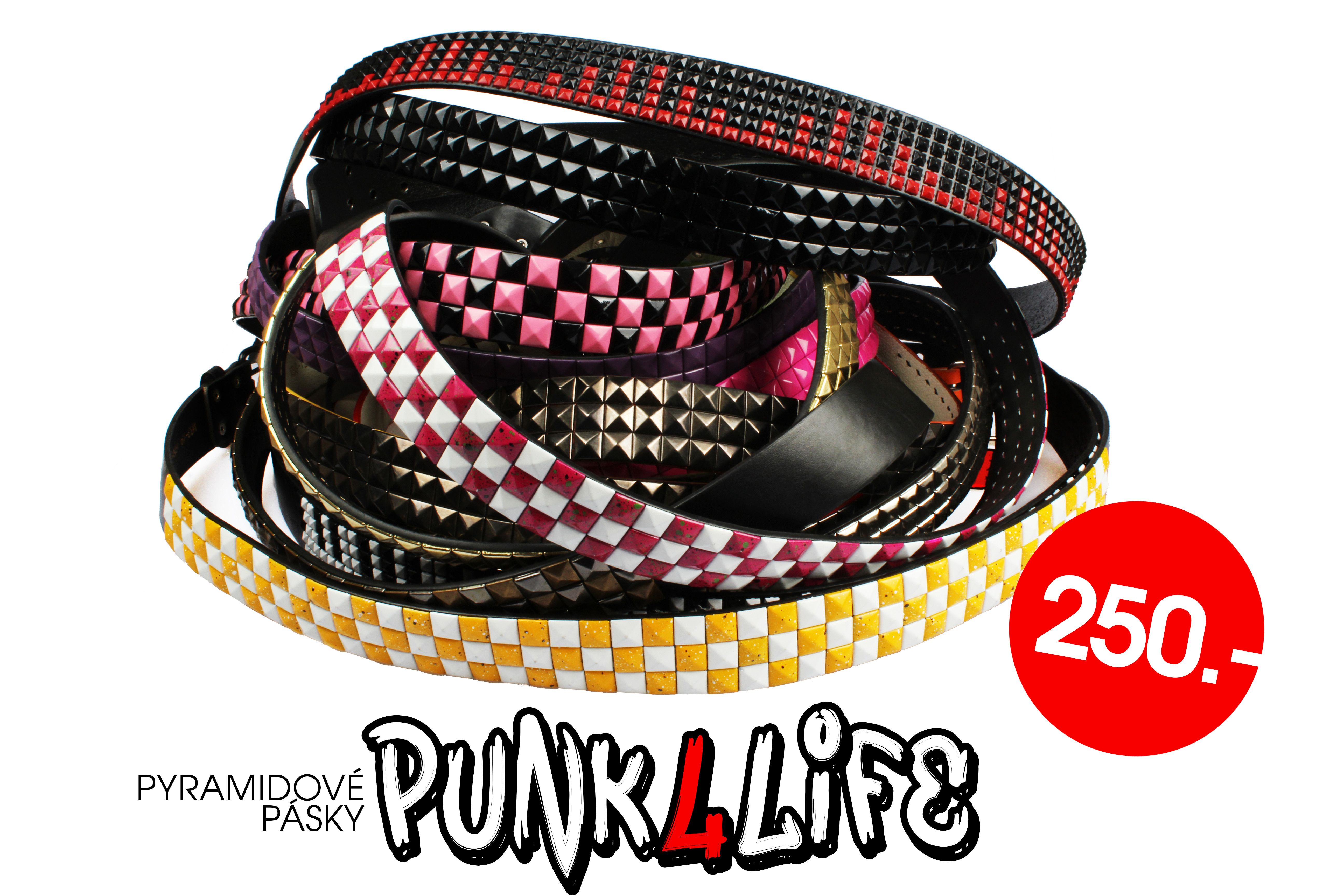 PUNK4LIFE